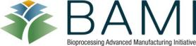 BAMI Logo